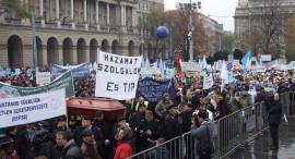 Tüntetés 2008